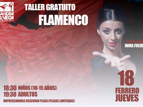 Vídeo clases flamenco
