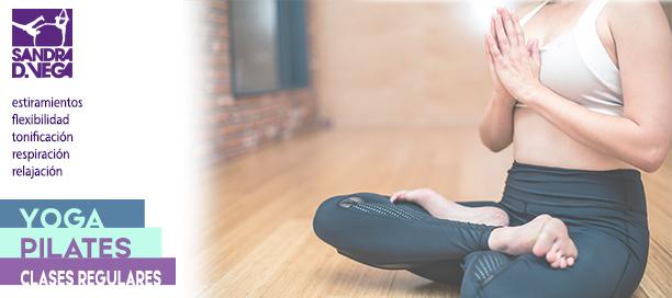 Clases de yoga y pilates - Academia Sandra D. Vega